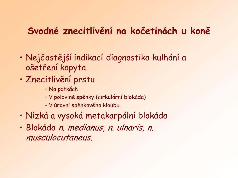 Nejčastější indikací diagnostika kulhání a ošetření kopyta. Znecitlivění prstu –Na patkách –V polovině spěnky (cirkulární blokáda) –V úrovni spěnkovéh