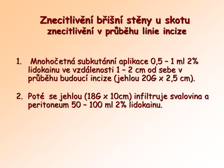 Znecitlivění břišní stěny u skotu znecitlivění v průběhu linie incize 1. Mnohočetná subkutánní aplikace 0,5 – 1 ml 2% lidokainu ve vzdálenosti 1 – 2 c