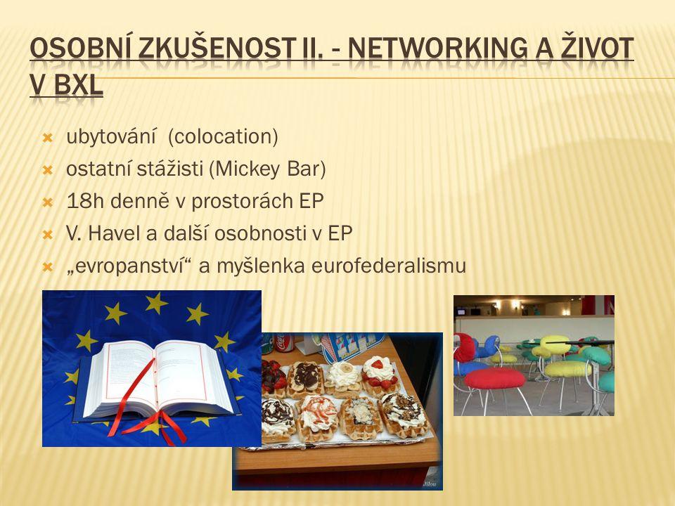 """ ubytování (colocation)  ostatní stážisti (Mickey Bar)  18h denně v prostorách EP  V. Havel a další osobnosti v EP  """"evropanství"""" a myšlenka euro"""
