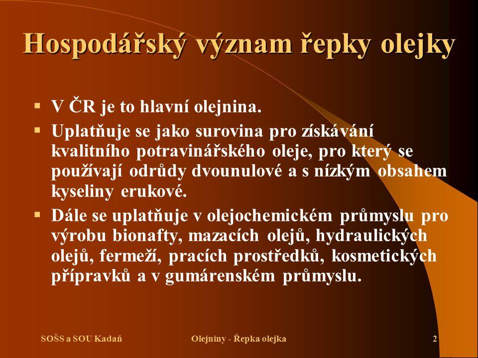 SOŠS a SOU KadaňOlejniny - Řepka olejka2 Hospodářský význam řepky olejky  V ČR je to hlavní olejnina.  Uplatňuje se jako surovina pro získávání kval
