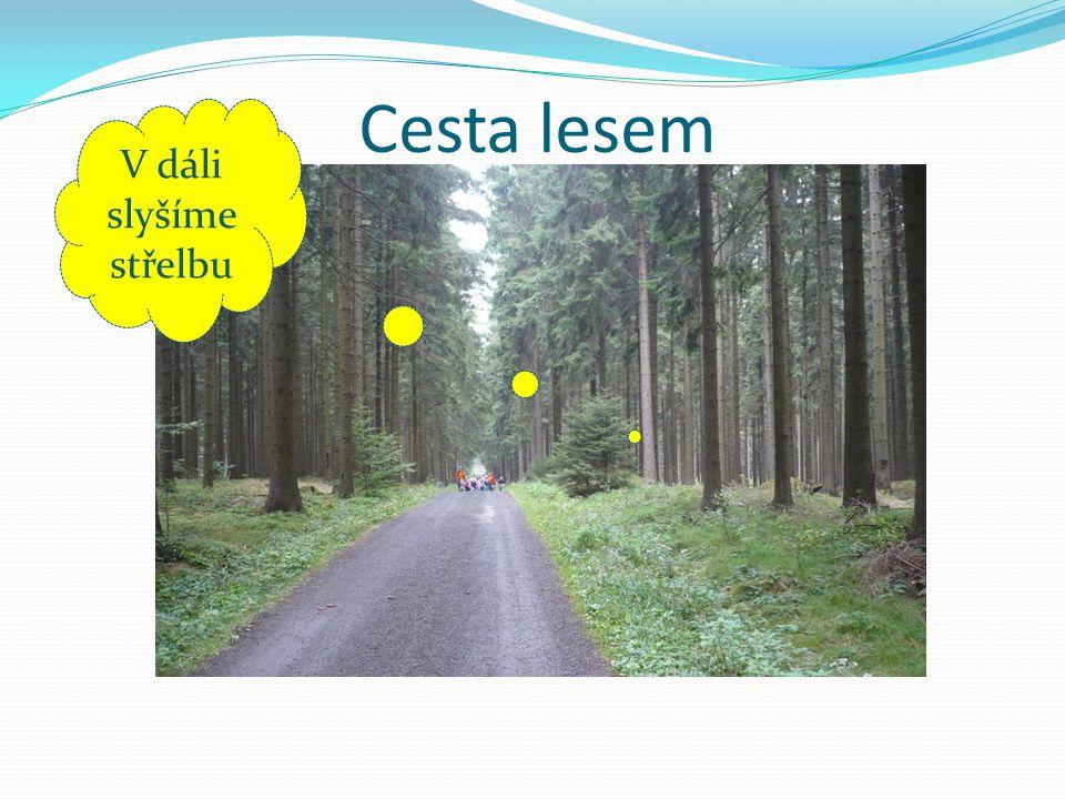 Cesta lesem V dáli slyšíme střelbu