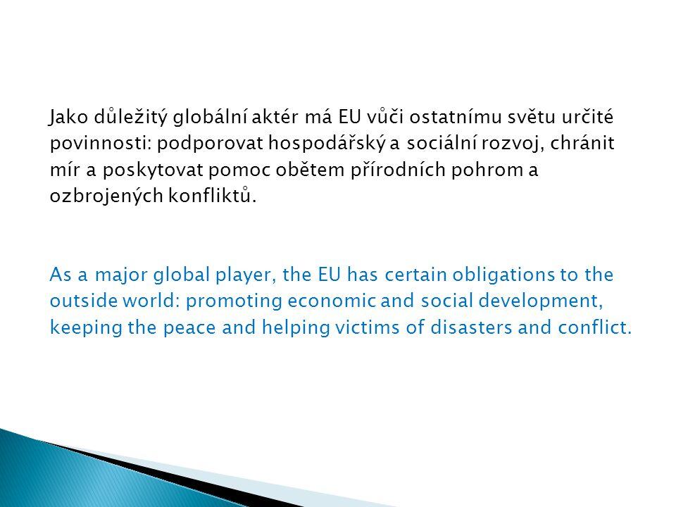 Jako důležitý globální aktér má EU vůči ostatnímu světu určité povinnosti: podporovat hospodářský a sociální rozvoj, chránit mír a poskytovat pomoc obětem přírodních pohrom a ozbrojených konfliktů.