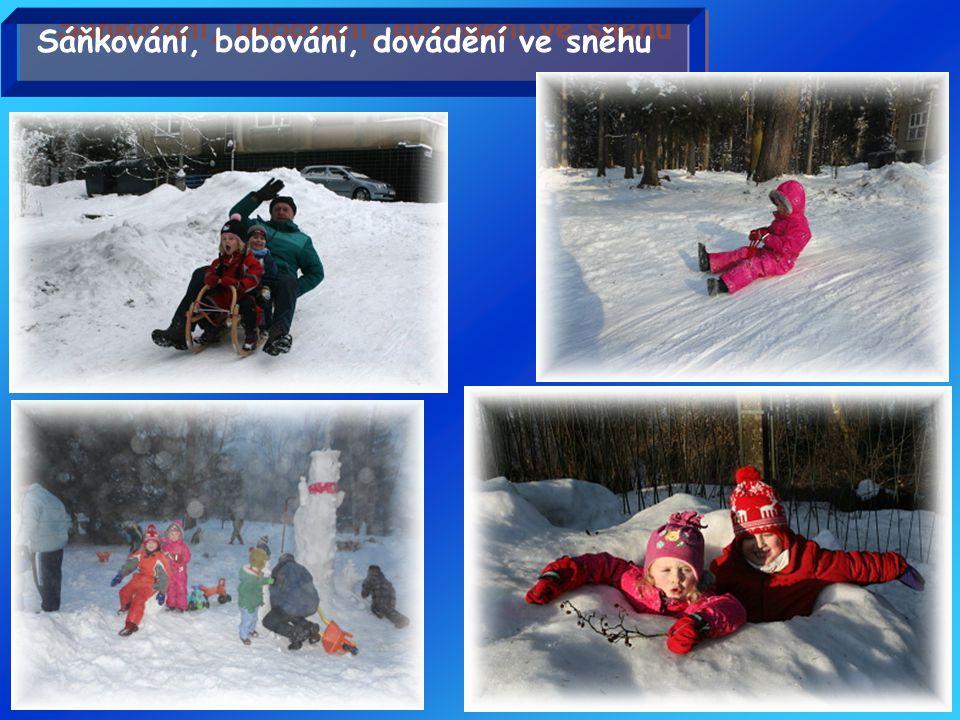 Sáňkování, bobování, dovádění ve sněhu