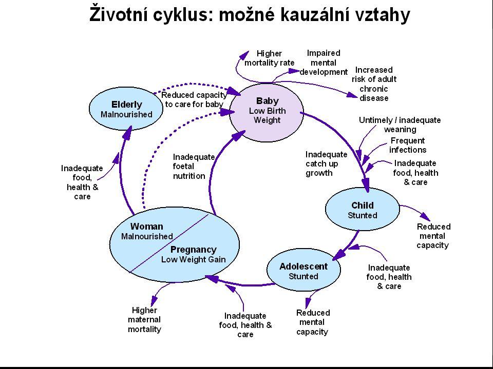 Úloha preventivního lékařství v řešení problémů výživy a zdraví Implementace výživových doporučení (ÚPL LF MU Brno) Projekty podpory zdraví (české děti, romské děti, české těhotné a kojící ženy) Konzultace v oblastech nutriční deprivace