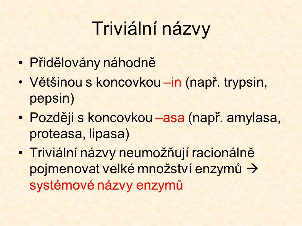 Triviální názvy Přidělovány náhodně Většinou s koncovkou –in (např. trypsin, pepsin) Později s koncovkou –asa (např. amylasa, proteasa, lipasa) Triviá