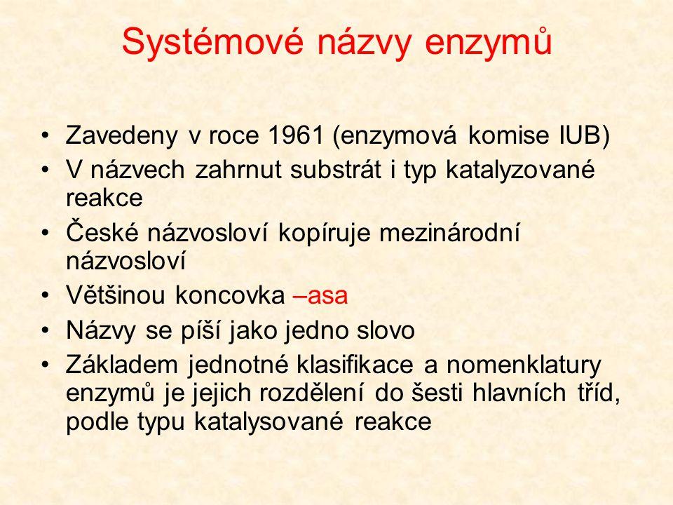 Systémové názvy enzymů Zavedeny v roce 1961 (enzymová komise IUB) V názvech zahrnut substrát i typ katalyzované reakce České názvosloví kopíruje mezin