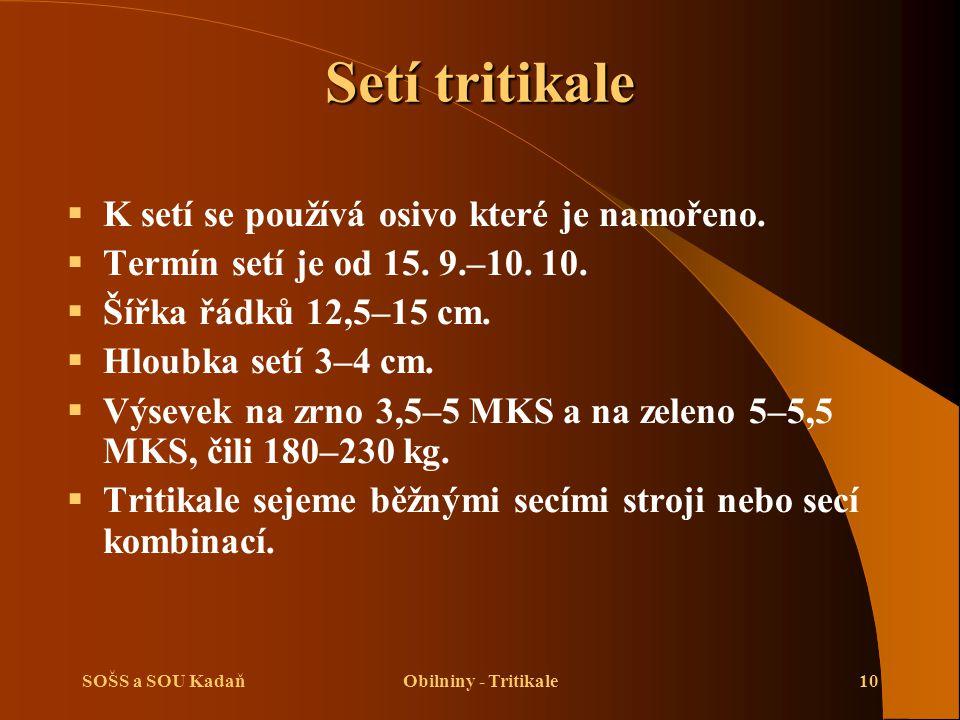 SOŠS a SOU KadaňObilniny - Tritikale10 Setí tritikale  K setí se používá osivo které je namořeno.  Termín setí je od 15. 9.–10. 10.  Šířka řádků 12