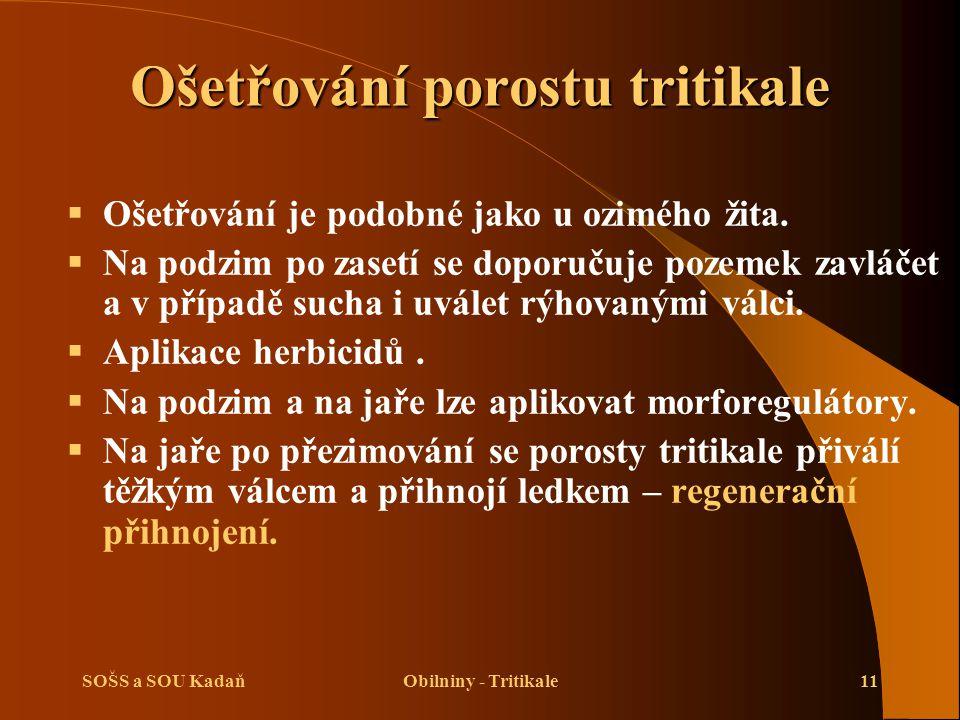 SOŠS a SOU KadaňObilniny - Tritikale11 Ošetřování porostu tritikale  Ošetřování je podobné jako u ozimého žita.  Na podzim po zasetí se doporučuje p