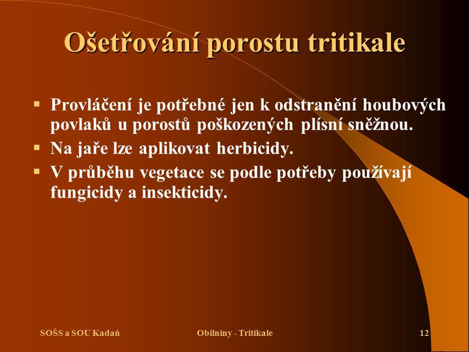 SOŠS a SOU KadaňObilniny - Tritikale12 Ošetřování porostu tritikale  Provláčení je potřebné jen k odstranění houbových povlaků u porostů poškozených