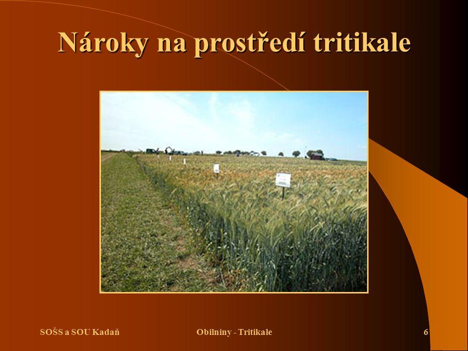 SOŠS a SOU KadaňObilniny - Tritikale6 Nároky na prostředí tritikale