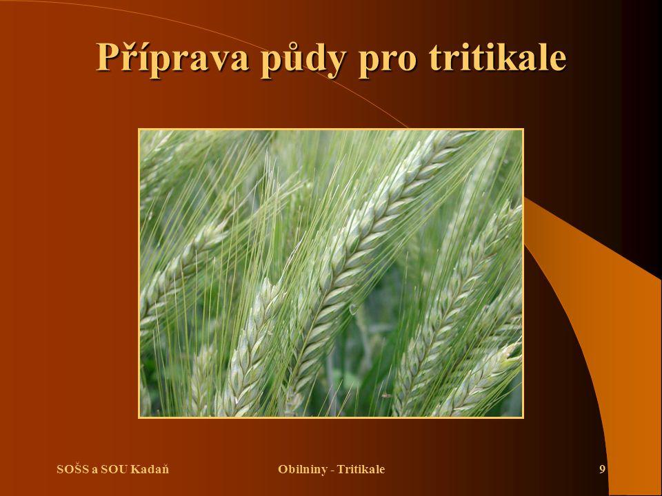 SOŠS a SOU KadaňObilniny - Tritikale9 Příprava půdy pro tritikale