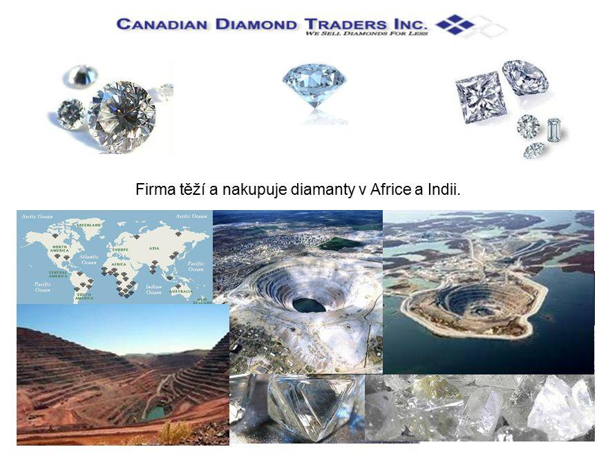 Firma těží a nakupuje diamanty v Africe a Indii.