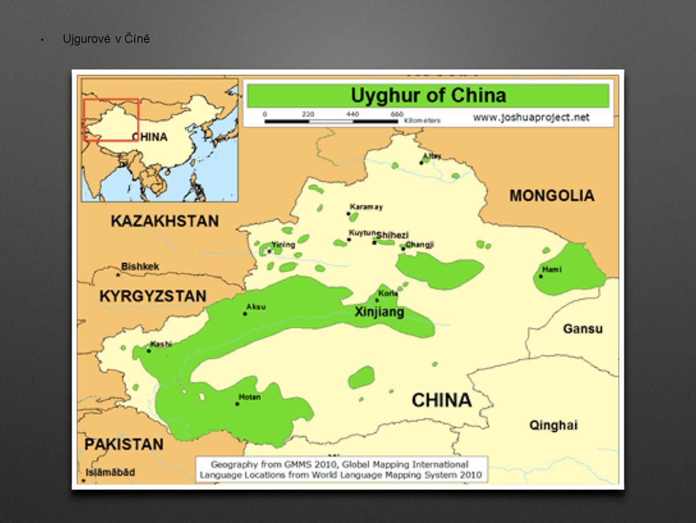 Ujgurové v Číně