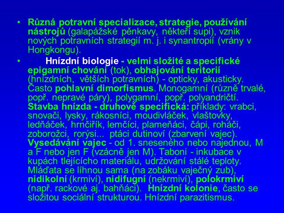 Různá potravní specializace, strategie, používání nástrojů (galapážské pěnkavy, někteří supi), vznik nových potravních strategií m. j. i synantropií (