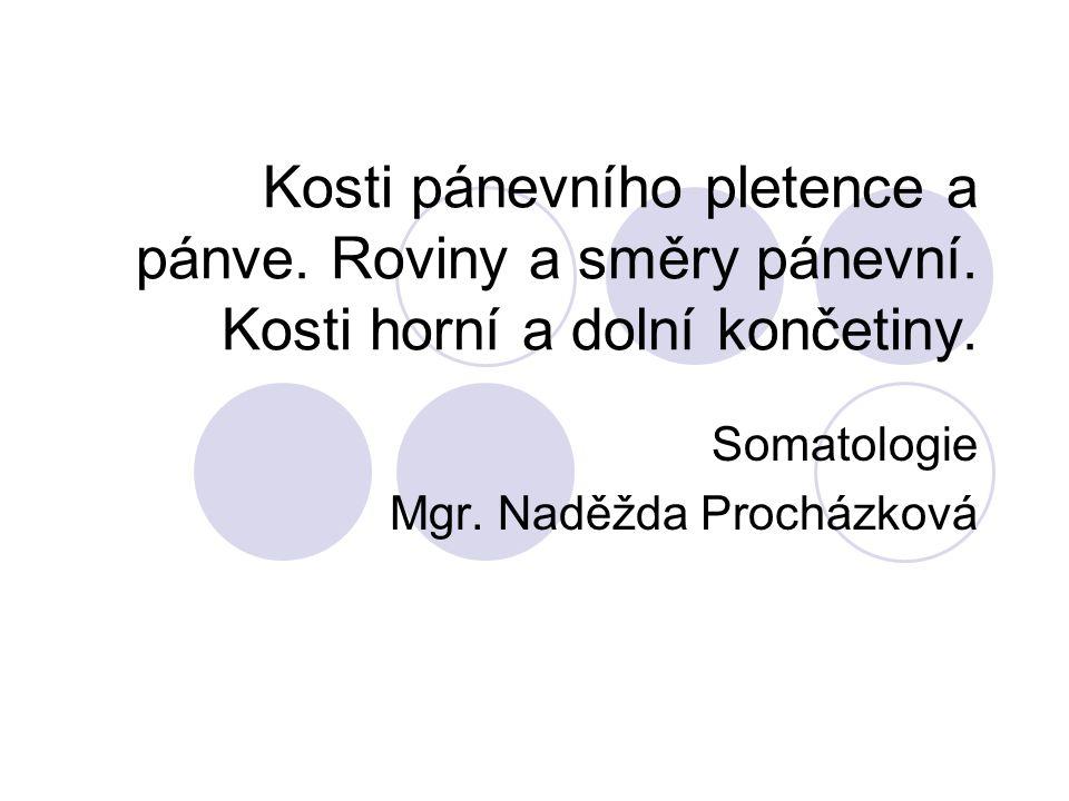Pánev - PELVIS Je složena: 2 kosti pánevní – OSSA COXAE Kost křížová – OS SACRUM Hlavní funkcí pánve je ochrana vnitřních orgánů – velká pánev (horní část), malá pánev (dolní část) = porodnická