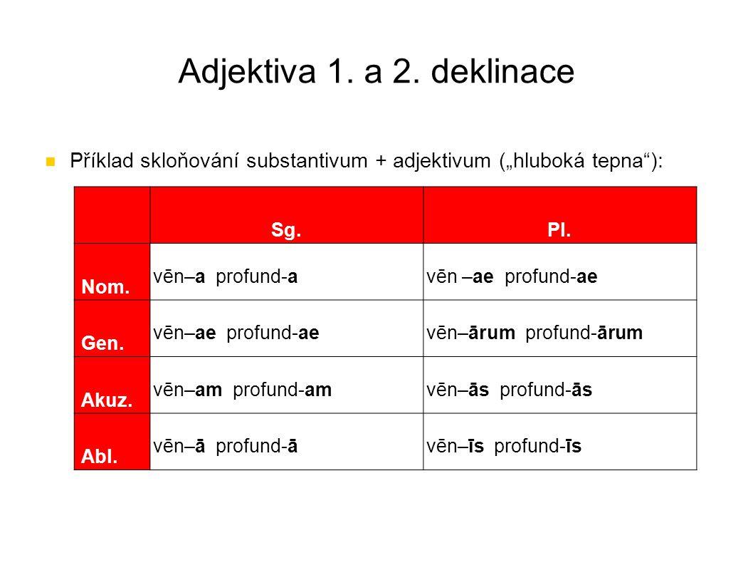"""Adjektiva 1. a 2. deklinace Příklad skloňování substantivum + adjektivum (""""hluboká tepna""""): Sg.Pl. Nom. vēn–a profund-avēn –ae profund-ae Gen. vēn–ae"""