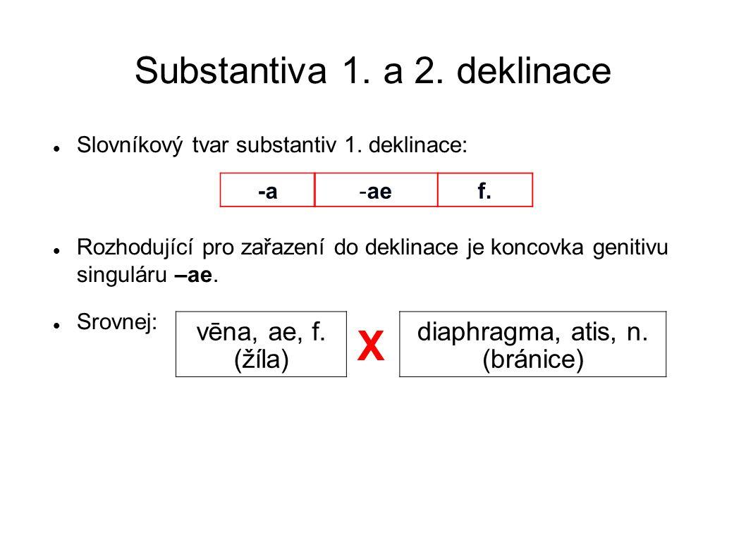 Substantiva 1. a 2. deklinace Slovníkový tvar substantiv 1. deklinace: Rozhodující pro zařazení do deklinace je koncovka genitivu singuláru –ae. Srovn