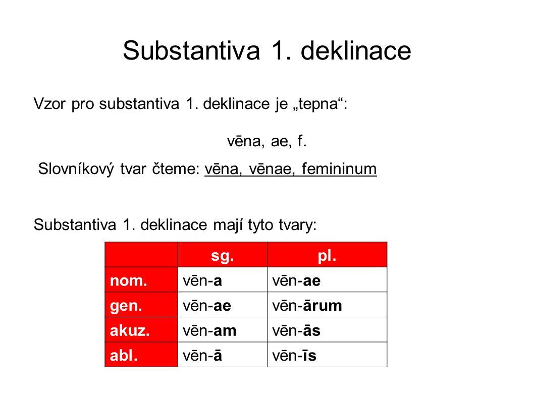 """Substantiva 1. deklinace Vzor pro substantiva 1. deklinace je """"tepna"""": Slovníkový tvar čteme: vēna, vēnae, femininum Substantiva 1. deklinace mají tyt"""