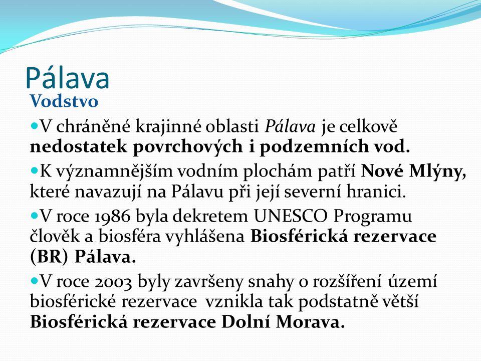 Pálava Vodstvo V chráněné krajinné oblasti Pálava je celkově nedostatek povrchových i podzemních vod.