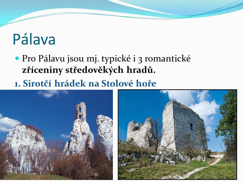 Pálava Pro Pálavu jsou mj.typické i 3 romantické zříceniny středověkých hradů.