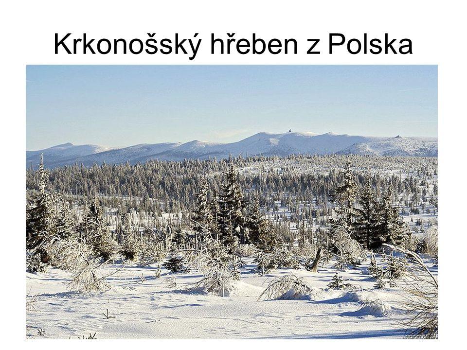 Morfologie Krkonošsko-jizerský pluton (žula, svor) Krystalické břidlice (starohorní) Ledovce ve čtvrtohorách –Trogy –Bludné balvany