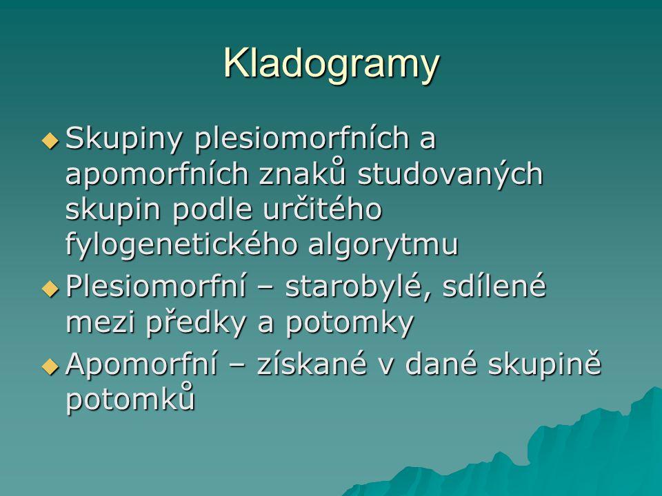 Kladogramy  Skupiny plesiomorfních a apomorfních znaků studovaných skupin podle určitého fylogenetického algorytmu  Plesiomorfní – starobylé, sdílené mezi předky a potomky  Apomorfní – získané v dané skupině potomků