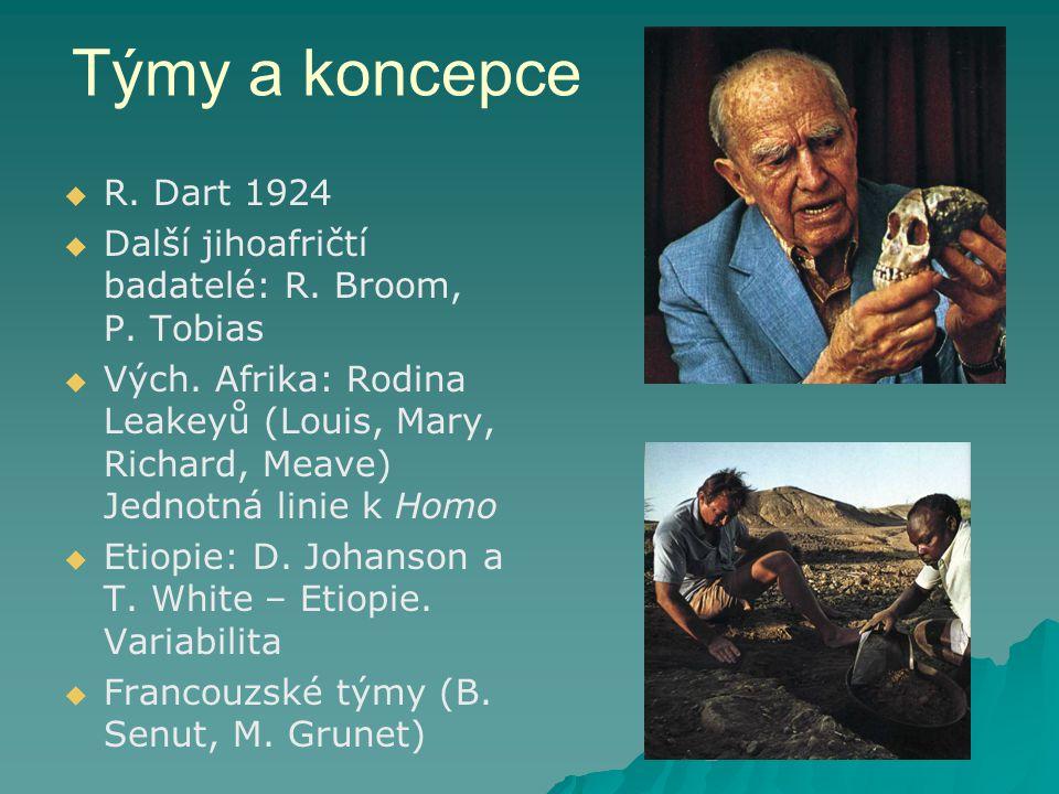 Týmy a koncepce   R.Dart 1924   Další jihoafričtí badatelé: R.