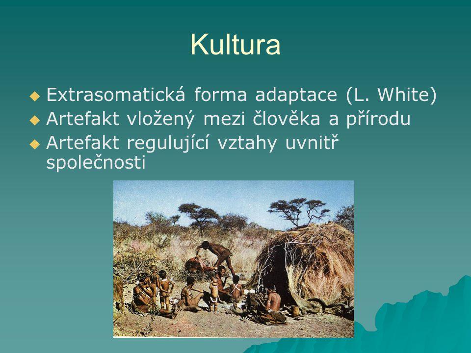 Kultura   Extrasomatická forma adaptace (L.