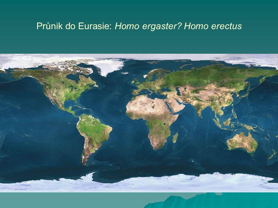 Průnik do Eurasie: Homo ergaster? Homo erectus