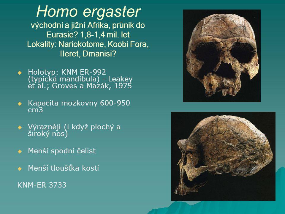 Homo ergaster východní a jižní Afrika, průnik do Eurasie.