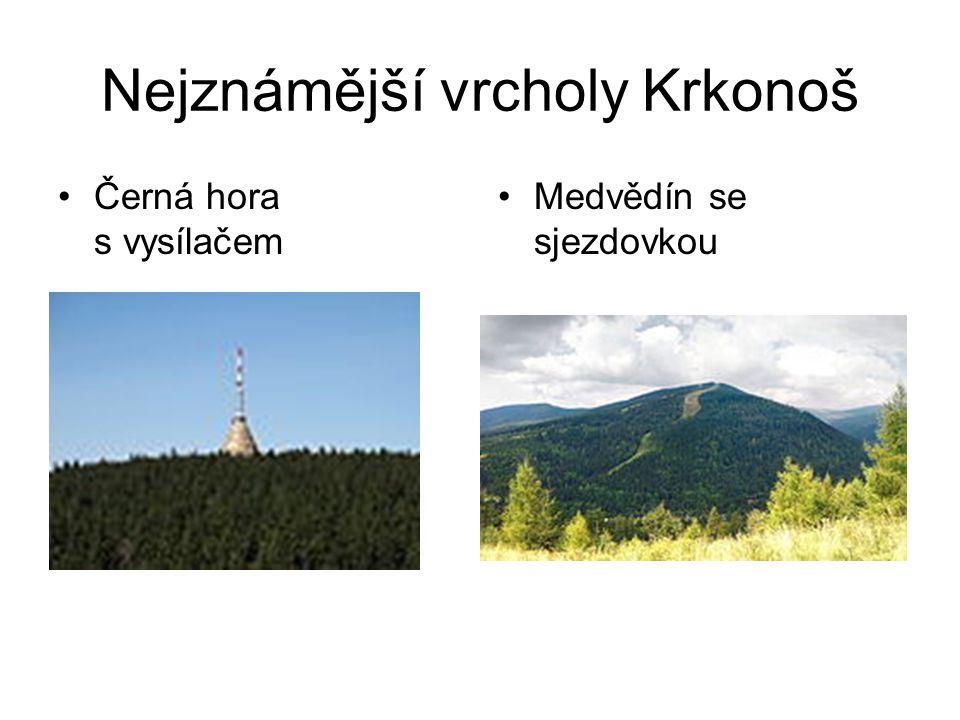 Nejznámější vrcholy Krkonoš Černá hora s vysílačem Medvědín se sjezdovkou