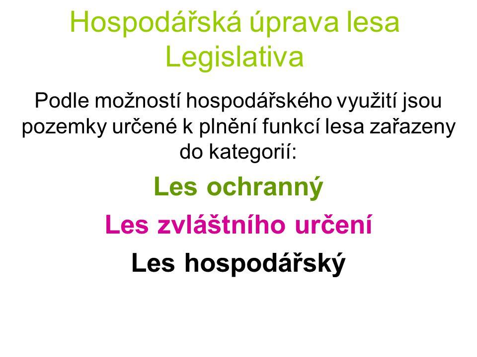 Hospodářská úprava lesa Legislativa Podle možností hospodářského využití jsou pozemky určené k plnění funkcí lesa zařazeny do kategorií: Les ochranný