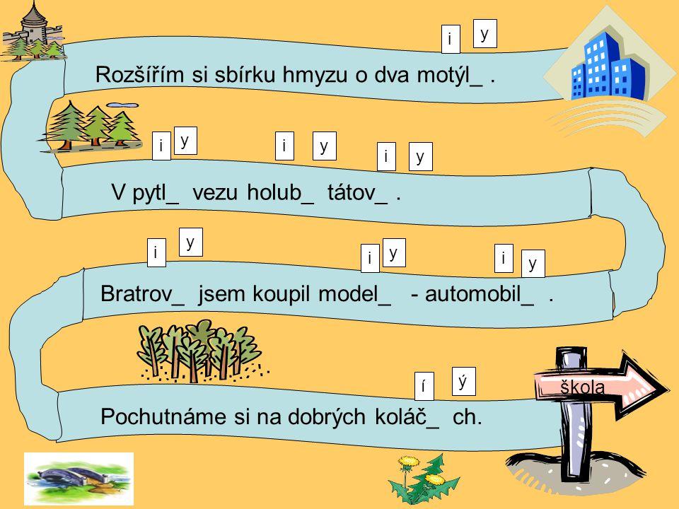 Rozšířím si sbírku hmyzu o dva motýl_.V pytl_ vezu holub_ tátov_.