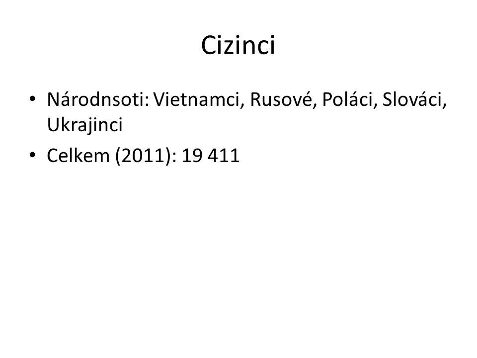 Cizinci Národnsoti: Vietnamci, Rusové, Poláci, Slováci, Ukrajinci Celkem (2011): 19 411