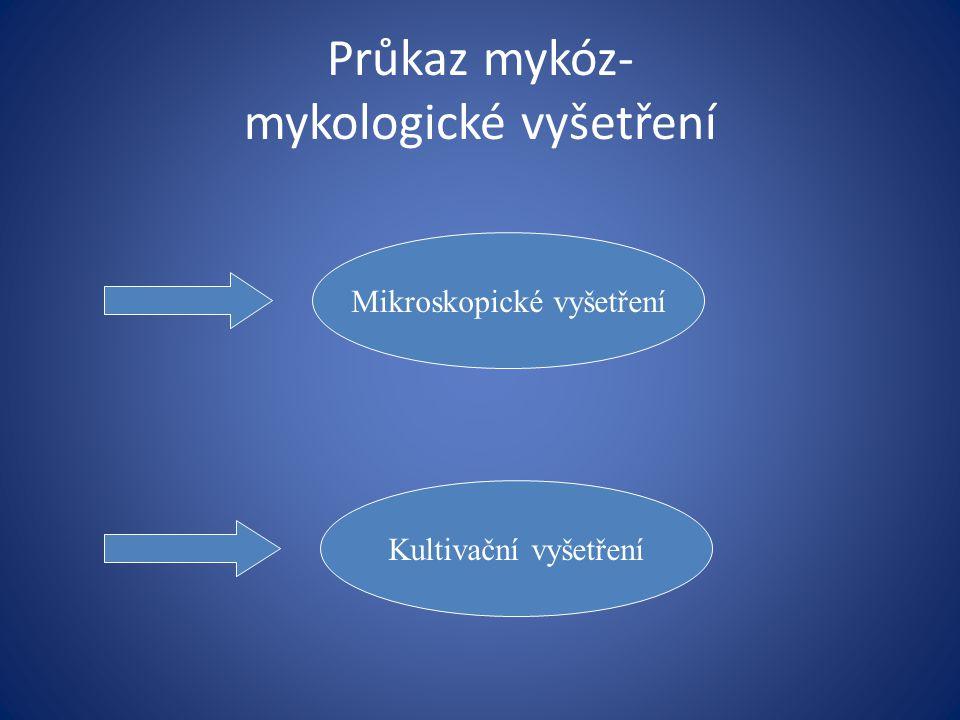 Průkaz mykóz- mykologické vyšetření Mikroskopické vyšetření Kultivační vyšetření