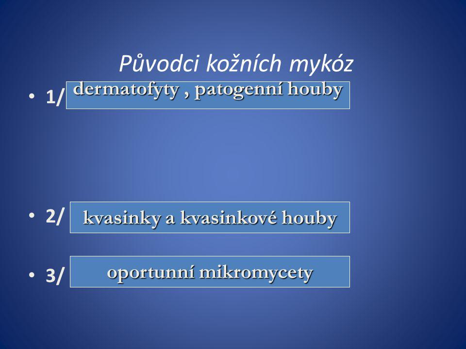 Specifická antimykotika 1/ polyenová antimykotika – - nystatin / Fungicidin ung/ – - natamycin/ Pimafucin, Pimafucort krém, ung/