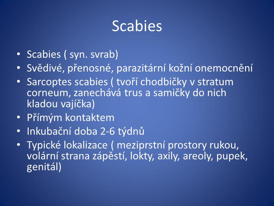 Scabies Scabies ( syn. svrab) Svědivé, přenosné, parazitární kožní onemocnění Sarcoptes scabies ( tvoří chodbičky v stratum corneum, zanechává trus a