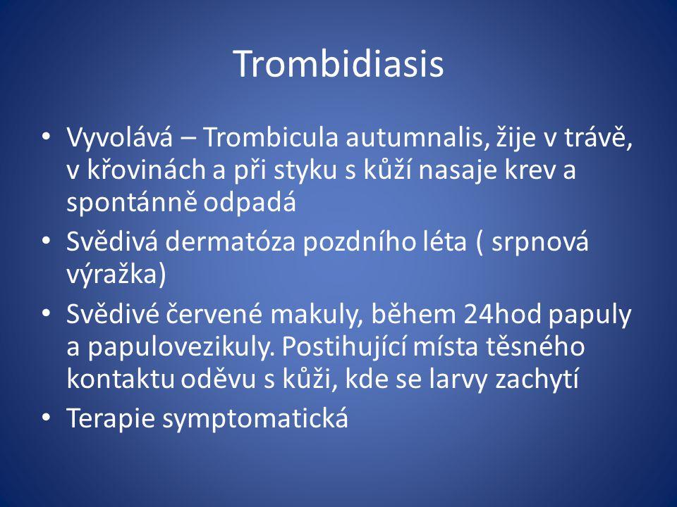 Trombidiasis Vyvolává – Trombicula autumnalis, žije v trávě, v křovinách a při styku s kůží nasaje krev a spontánně odpadá Svědivá dermatóza pozdního léta ( srpnová výražka) Svědivé červené makuly, během 24hod papuly a papulovezikuly.