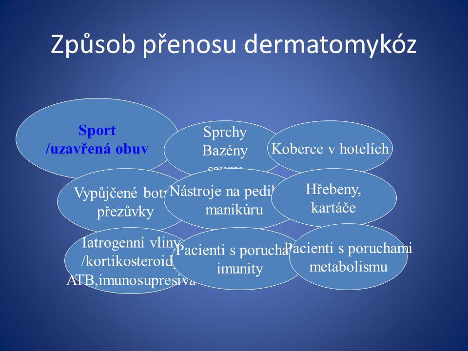 Tinea capitis Dermatofytické onemocnění vlasaté časti hlavy, obočí a řas, více dětí Etiologie: Trichopyton a Microsporum.