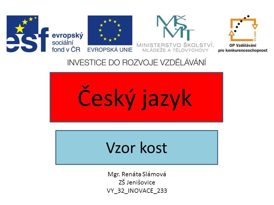 Vzor kost Český jazyk Mgr. Renáta Slámová ZŠ Jenišovice VY_32_INOVACE_233