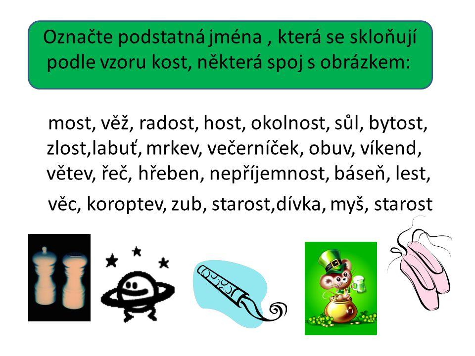 Označte podstatná jména, která se skloňují podle vzoru kost, některá spoj s obrázkem: most, věž, radost, host, okolnost, sůl, bytost, zlost,labuť, mrk