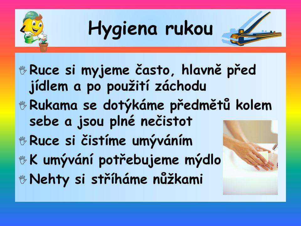 Hygiena rukou  Ruce si myjeme často, hlavně před jídlem a po použití záchodu  Rukama se dotýkáme předmětů kolem sebe a jsou plné nečistot  Ruce si