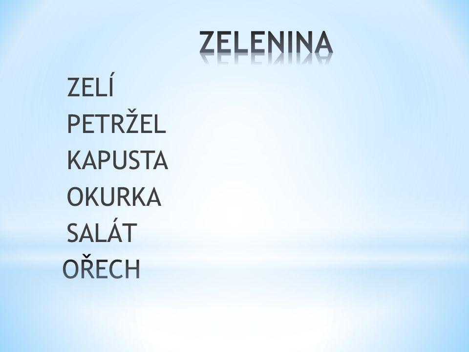 ZELÍ PETRŽEL KAPUSTA OKURKA SALÁT