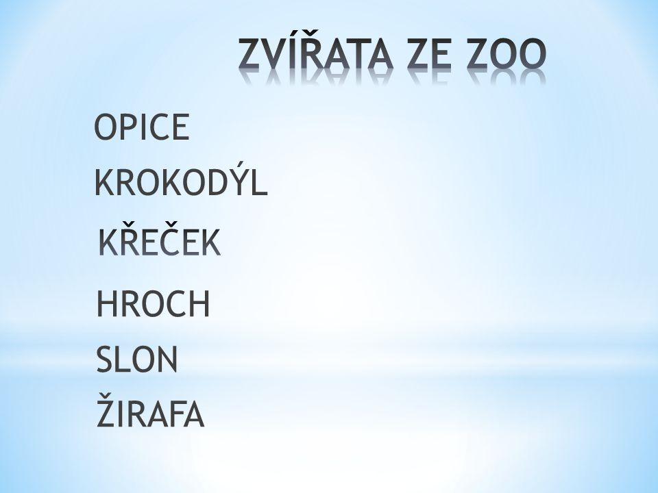 OPICE KROKODÝL HROCH SLON ŽIRAFA