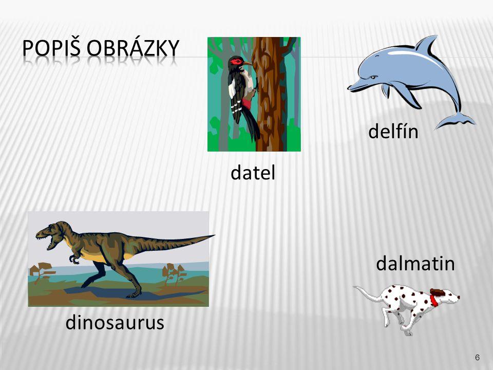 delfín 6 dinosaurus dalmatin datel