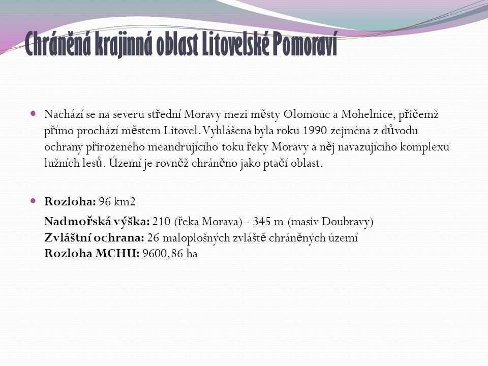 Chráněná krajinná oblast Litovelské Pomoraví Nachází se na severu st ř ední Moravy mezi m ě sty Olomouc a Mohelnice, p ř i č emž p ř ímo prochází m ě stem Litovel.