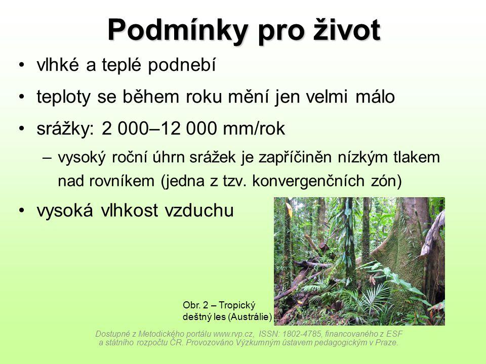 Rozložení ve světě Dostupné z Metodického portálu www.rvp.cz, ISSN: 1802-4785, financovaného z ESF a státního rozpočtu ČR.