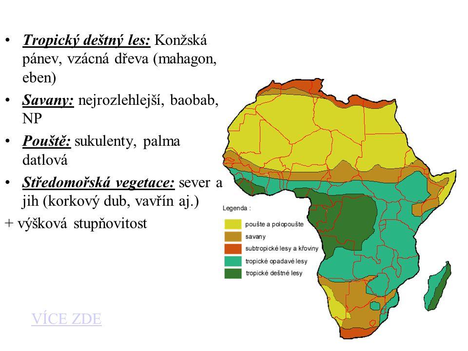Tropický deštný les: Konžská pánev, vzácná dřeva (mahagon, eben) Savany: nejrozlehlejší, baobab, NP Pouště: sukulenty, palma datlová Středomořská vege