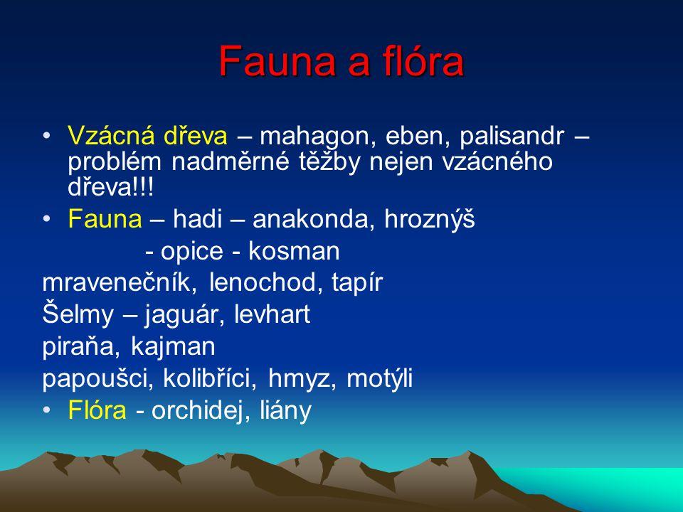 Fauna a flóra Vzácná dřeva – mahagon, eben, palisandr – problém nadměrné těžby nejen vzácného dřeva!!! Fauna – hadi – anakonda, hroznýš - opice - kosm