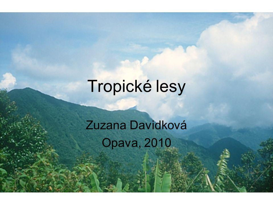 Tropické lesy Zuzana Davidková Opava, 2010